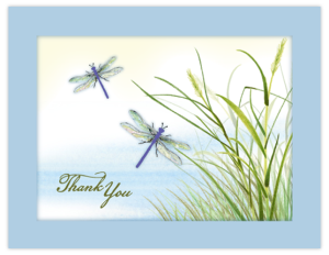 FL 24a - dragonfly grass 'thank you'