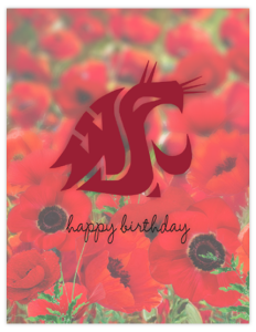CG 27a - wsu poppies